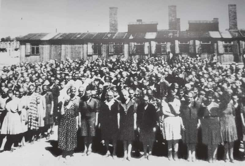 Auschwitz II Roll Call New Woman Summer 1944