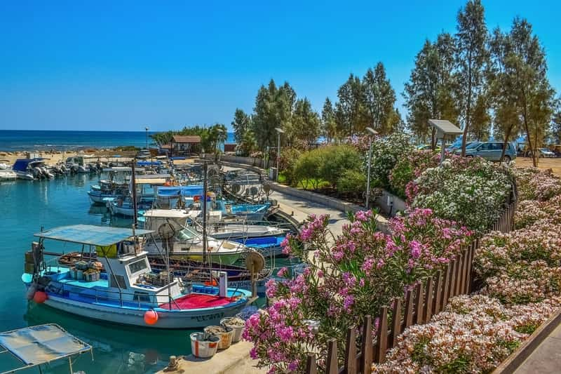 fish harbor Cyprus