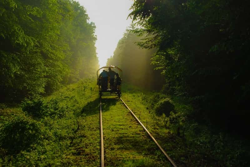 Hand Railway train in Bialowieza National Forest. Weather in Poland. Beautiful Spring